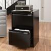 Bisley Premium 2-Drawer File Cabinet