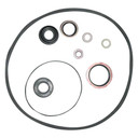 P S Pump Seal Kit for Massey Ferguson Tractor 135 Others-1810529M91