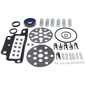 Pump repair Kit for Ford Holland Tractor - CKPN600A