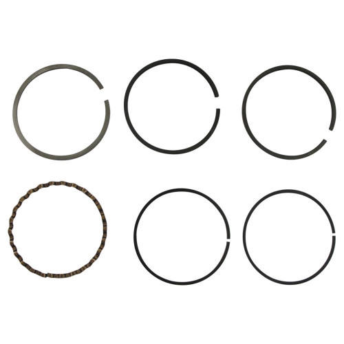 Ring Set For Massey Ferguson 836117M1, 836117M91