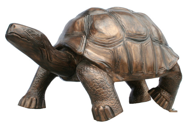 "Turtle Giant Galapago Size 50""L x 30""W x 28""H"