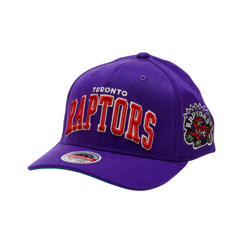 Raptors Toronto Purple Front