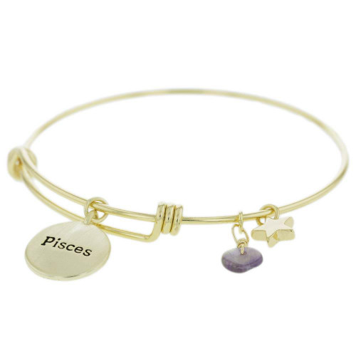 Pisces Constellation Charm Bracelet