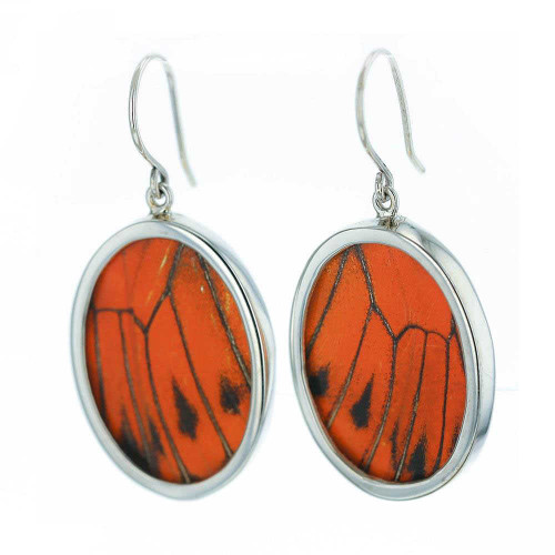 Monarch Butterfly Oval Silver Earrings