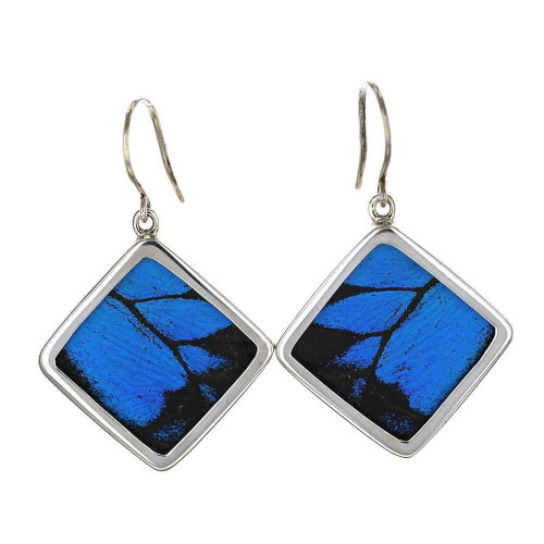 Blue Morpho Butterfly Square Earrings