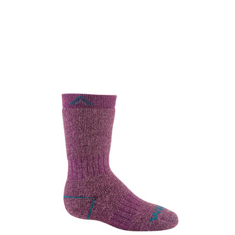 Wigwam Youth 40 Below II Socks purple