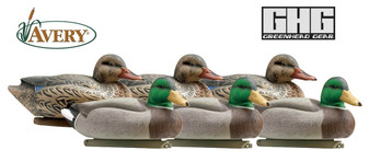 Essential Series Mallards - 1 Dozen