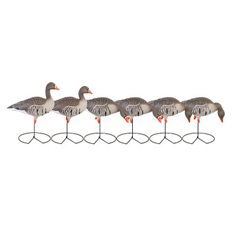GHG FFD Elite Full Body Specklebelly Decoy