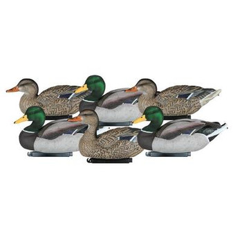 Dakota Packable Flocked Mallard Decoys-6pk