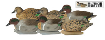 Pro-Grade FFD Elite Green-Winged Teal