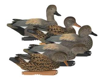 Pro-Grade Fully Flocked Gadwalls 6 pack
