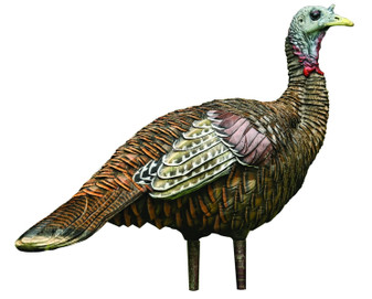 LCD - Lookout Hen Turkey Decoy