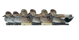 Avian-X TopFlight Gadwall Decoys-6pk
