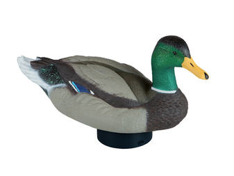 Quiver Duck HD
