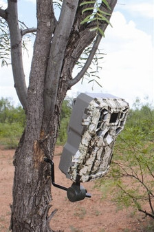 Economy Trail Camera Holder