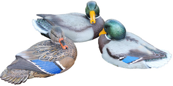 Fatal Front Folding Keel Decoy