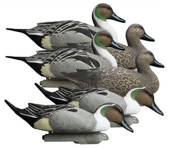 Battleship Pintail Foam Filled