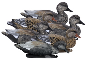 Battleship Gadwall Foam Filled