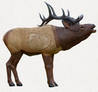 1/3 Scale Woodland Elk