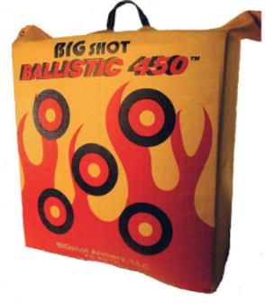 Ballistic 350 Bag Target