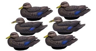 FlexFloat Black Duck 6pk