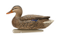 Avian-X TopFlight Open Water Mallard Decoys-6pk