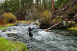 The Golden Rule Of Fly Fishing