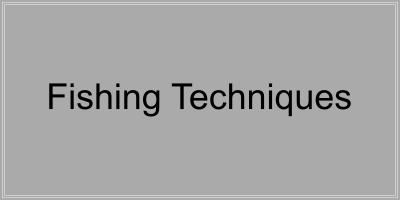 fishing-techniques-button.png