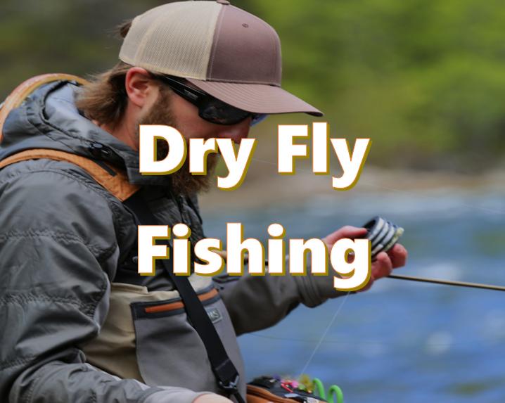 sff-dryflyfishing-lc.png