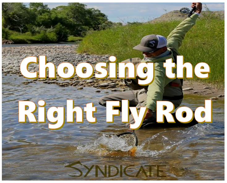 how to choose fly rod