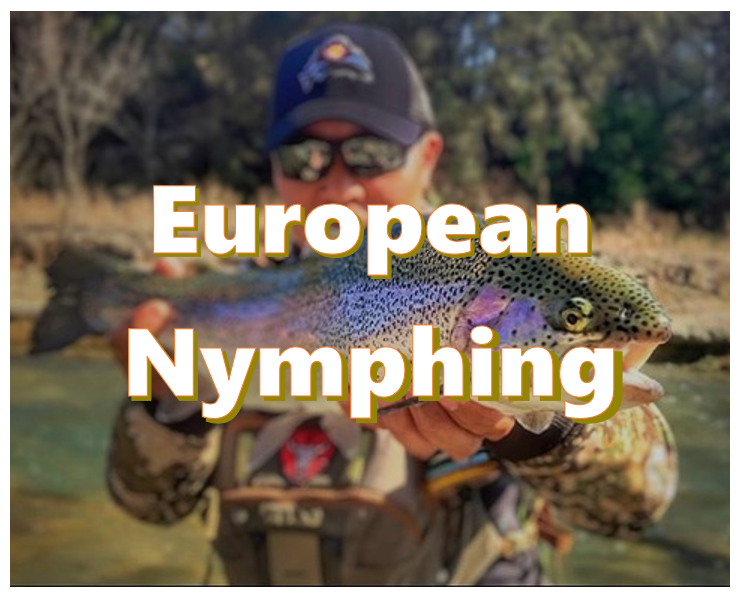 what is european nymphing