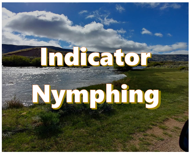 what is indicator nymphing