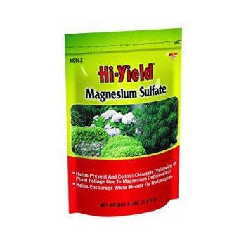 Magnesium Sulfate