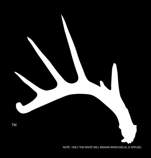 OUR LARGE WHITETAIL DECAL!  THIS THING IS AWESOME!  GET YOURS TODAY.