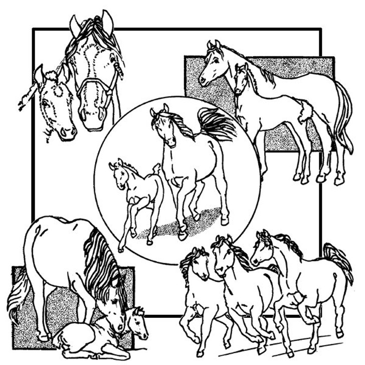 Aunt Martha's #3936 Horses