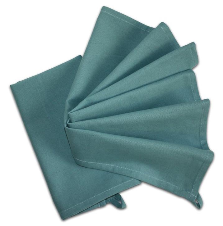 Aunt Martha's Stitch 'Em Up Solid Dishtowel (Robin Egg Blue) Pkg of 2 towels