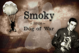 Smoky the War Dog--Hero of the Air Force and National Sensation