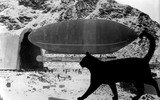 Kiddo takes off: Was the first-ever in-flight radio transmission about a cat?