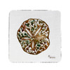 Sand Dollar Coasters - Set of 4