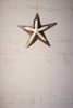 Driftwood Star Ornaments with Starfish Detail - Set of 4