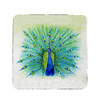 Peacock Coasters - Set of 4