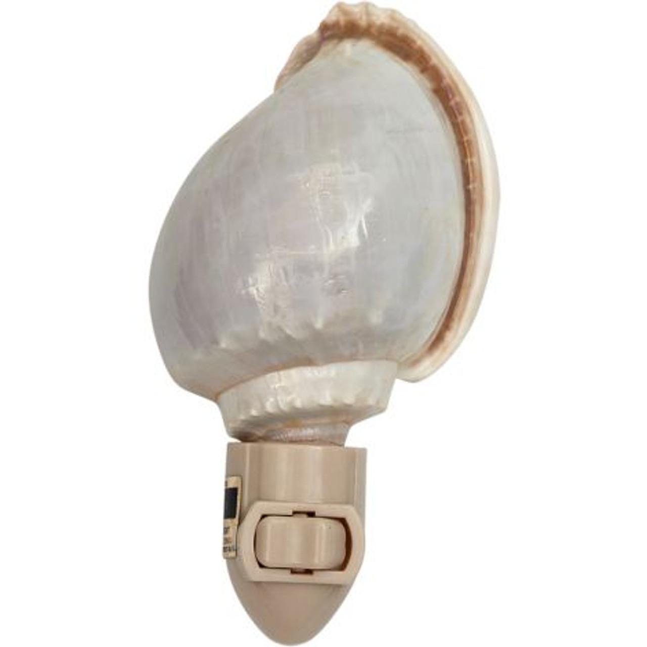 Bonnet Shell Night Light