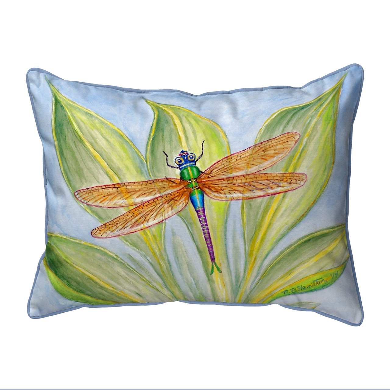 Dick's Dragonfly Pillows
