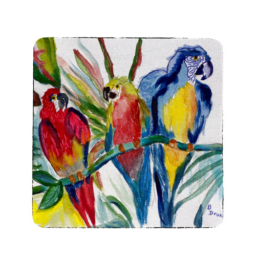 Parrot Family Coasters - Set of 4