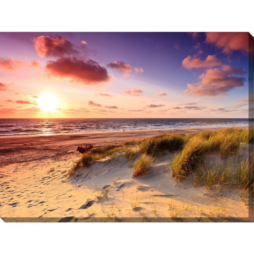 Windswept Outdoor Canvas Art