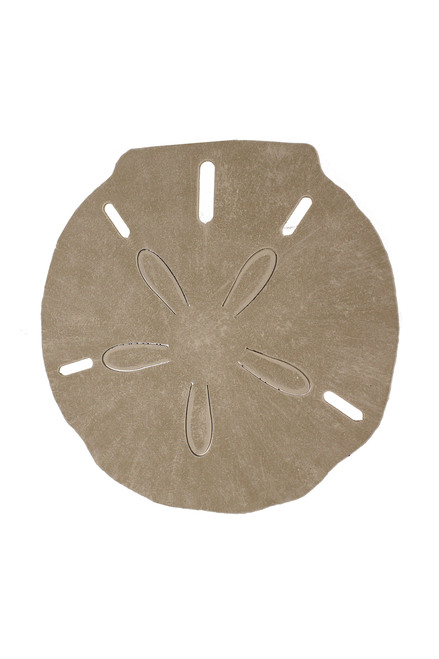 Sand Dollar Drink Table