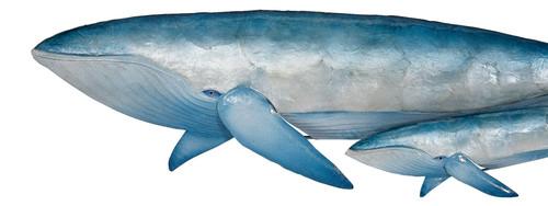 Whale Pair Wall Art - Blue and White - Metal & Capiz