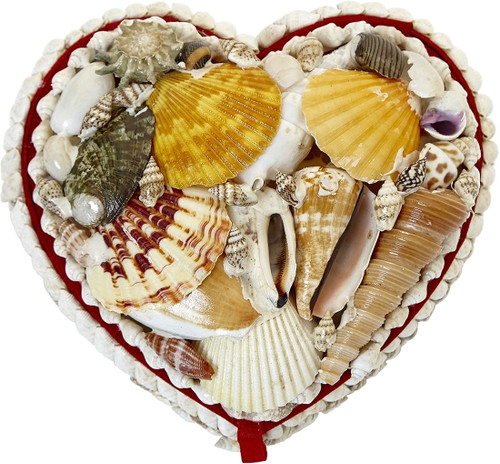 Heart Shaped Natural Shell Jewelry Box - 5""