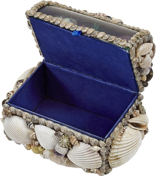 "Natural Seashell Treasure Box with Underwater Scene on Lid - 6"" - Open Front"