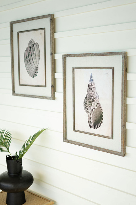 Black and White Shell Prints with Frame - Set of 2